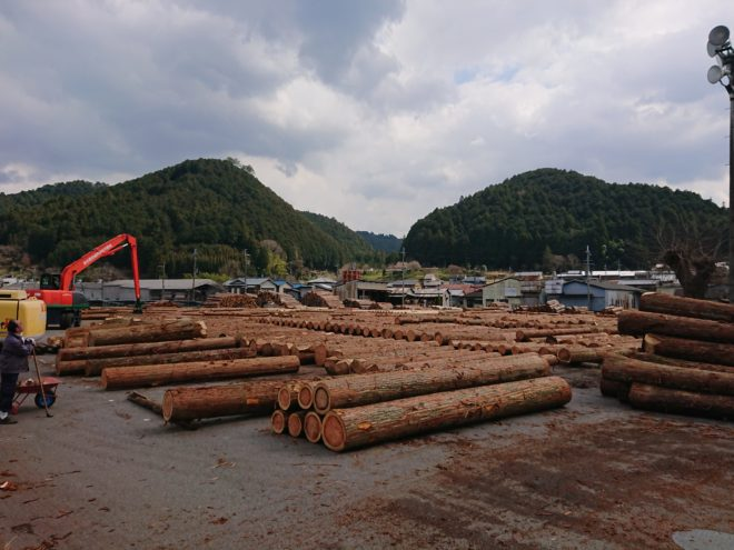 3月18日奈良の木吉野祭り杉入荷状況