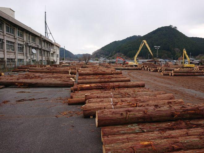 3月18日奈良の木吉野祭り桧入荷状況