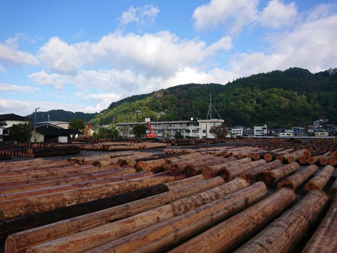 10月26日林材祭杉入荷状況