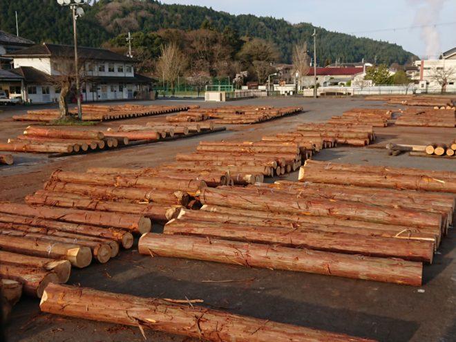 3月23日奈良の木祭桧入荷状況