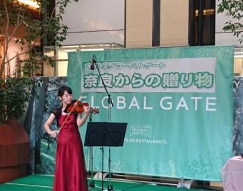 吉野杉バイオリン