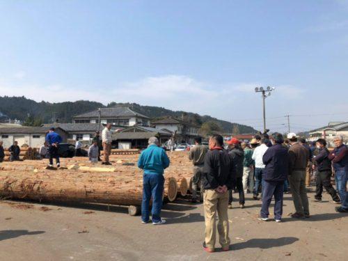 原木市場2