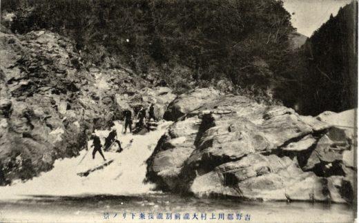 吉野林業の歴史
